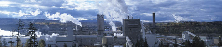 Cariboo Pulp & Quesnel Pulp, West Fraser, Quesnel, BC - supplied by www.naturallywood.com